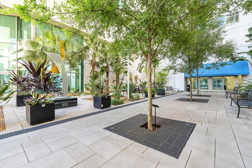 Sarasota Memorial Hospital Landscaping Paving Helmuth Landscaping Pros