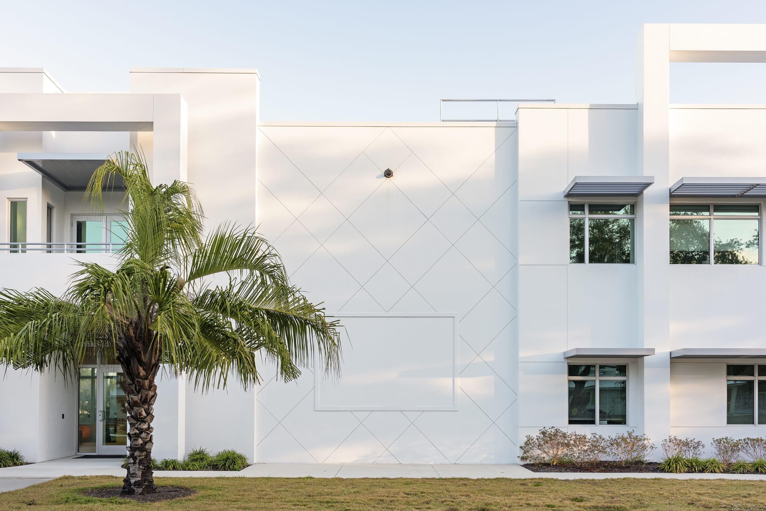 Projector Area Palm Tree White Contemporary Children Center
